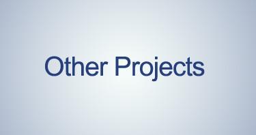 دیگر پروژه ها